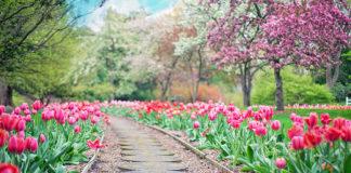 Czapki wiosenne damskie – najmodniejsze propozycje z kolekcji wiosna/lato 2019