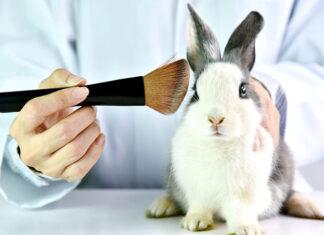 Które kosmetyki nie są testowane na zwierzętach